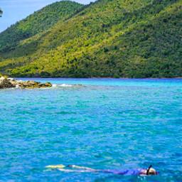 snorkel snorkeling clearwater water ocean freetoedit