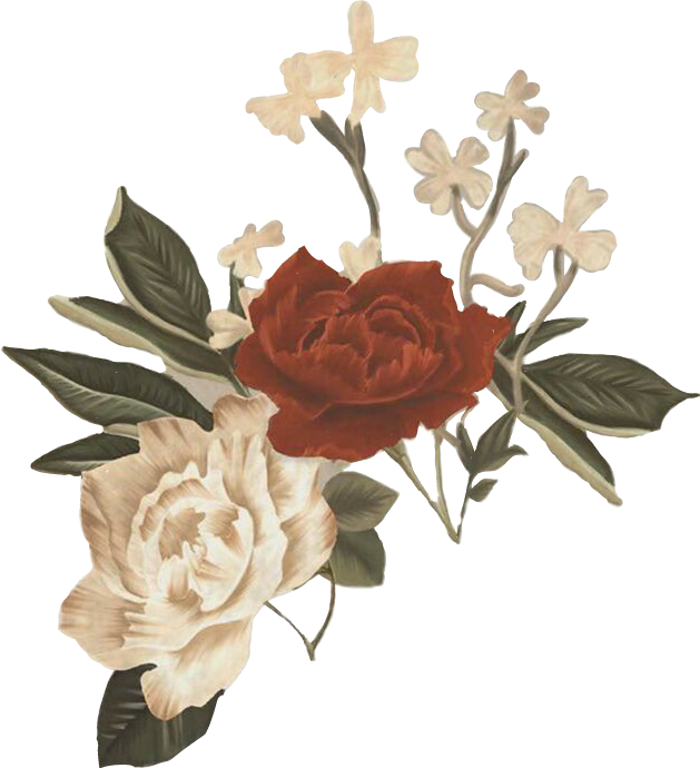 #aesthetic #flower #aestheticflower #aestheticflowers #flores #vintageaesthetic #vintage #aestheticedit #aestheticvintage