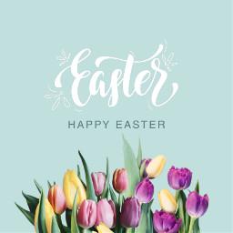 easter happyeaster bunny flowers spring freetoedit