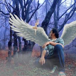 freetoedit malaikat sayap hutan
