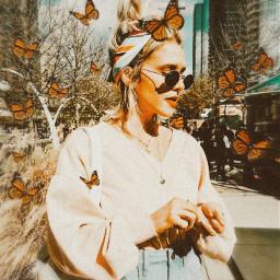 freetoedit butterfly vintage retro aesthetic