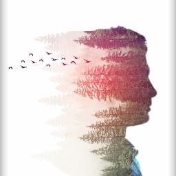 silhouette doubpleexposure freetoedit