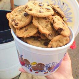 cookies aesthetic biscuit