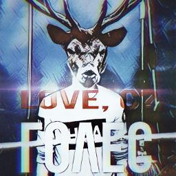 dearmydear dearsociety deers deerhunting night