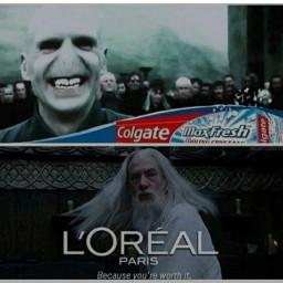 meme harrypotter lordvoldemort dumbledore