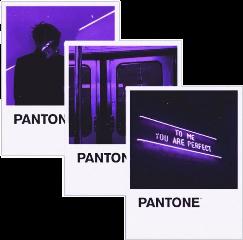 pantone purple dark aesthetic palette freetoedit