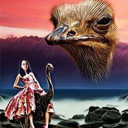 ostrich landscape walks magiceffects freetoedit
