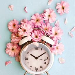 freetoedit coffe alarmclock flowers hand irccupofjoe cupofjoe