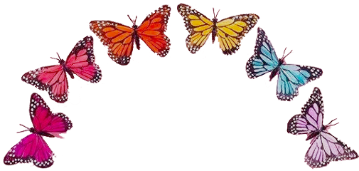 crown colorful butterflies rainbow aesthetic freetoedit