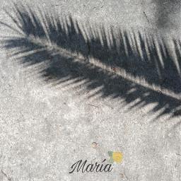 maria sun yellow