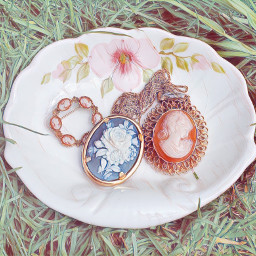 freetoedit grass sketchyeffect broche broches