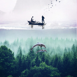 freetoedit forest water fishing dolphins