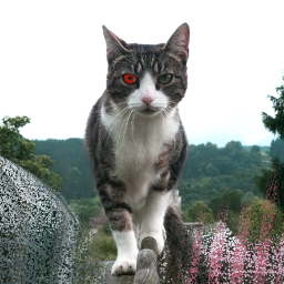 edit picsart cat eye fear freetoedit