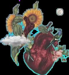 freetoedit corazon