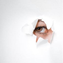 eye eyes white freetoedit