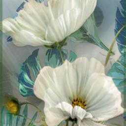 freetoedit roses flower leaves mural srcmonsteramoment