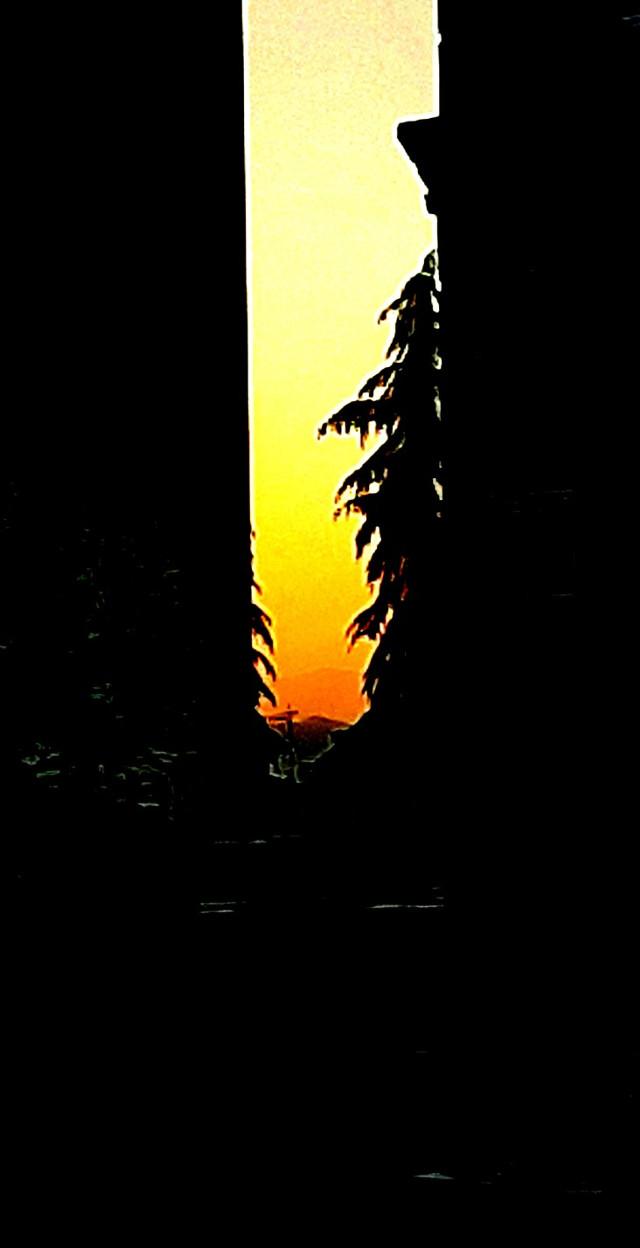 #freetoedit #Sunrise #spring #stayathome #photography #mobilephotography