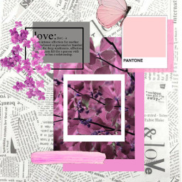 freetoedit collages collage editaesthetic stickers