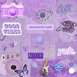 purplevibes dogs animals freetoedit