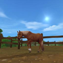 sso horse quarterhorse starstable starstableonline freetoedit