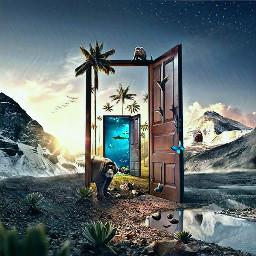 door planet animal life emotion