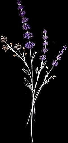 flor floral flowers vintage freetoedit