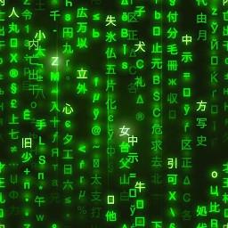 chino green black hack verde