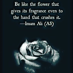 thoughts quotes life islam