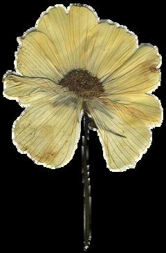 stickersjani jani flores vintage flowers freetoedit