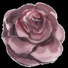 stickersjani jani vintage flores flowers freetoedit