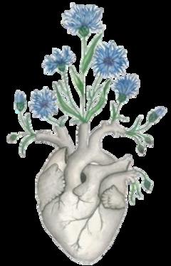 stickersjani jani heart corazon flores freetoedit
