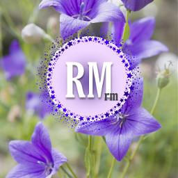 rm namjoon bts army