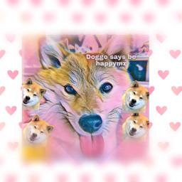 doggy doggo doggo freetoedit doggo