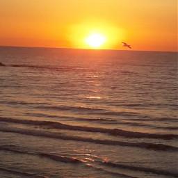 myphoto mylive dawn sun sunshine