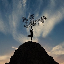 freetoedit yoga yogalife
