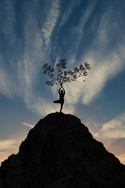 #freetoedit #yoga #yogalife