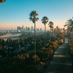 losangeles beautifulplace wonderful freetoedit beautiful
