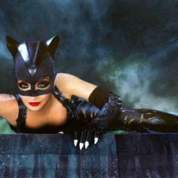 freetoedit kittycat roof black_cat catwoman