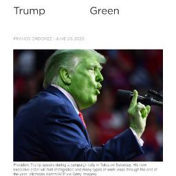 trump green spoonham