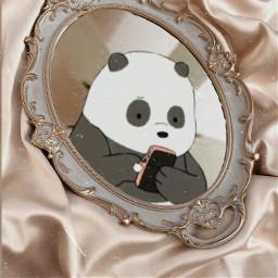 just panda taking a mirror freetoedit
