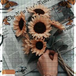 freetoedit challenge sunflowers paint hand fcexpressyourself expressyourself ExpressYourself