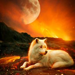 freetoedit alpha wolf devil lava orange moon sky asthetic dpeditz2003 remix surreal photo artwork animal