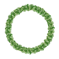 circle green simple origftestickers freetoedit ftestickers