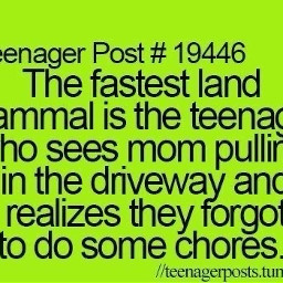 teenagerposts freetoedit