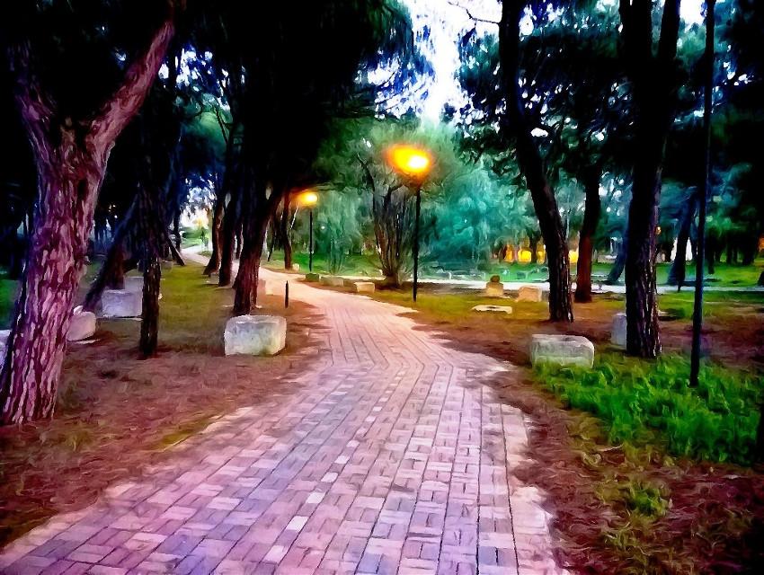 #freetoedit #park #night #mycolor #photoremix