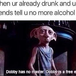 harrypotter harrypottermemes dobby dobbyisfree memes freetoedit