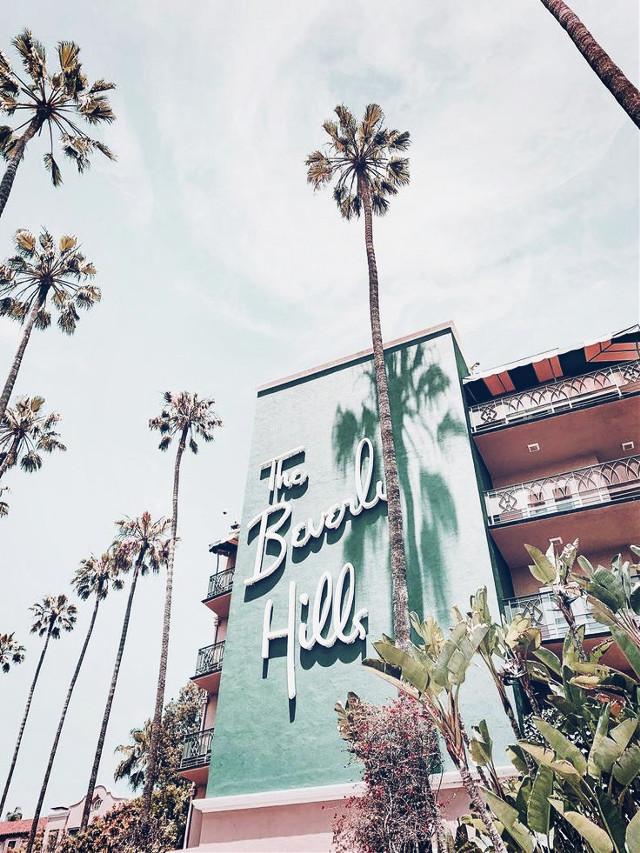 ✨ 𝕎𝕖𝕝𝕔𝕠𝕞𝕖 𝕥𝕠 @happy_vibez_collab ✨  ᵀᵒᵈᵃʸ'ˢ ᵖᵒˢᵗ ⁱˢ ᵇʸ: @coralwaves (sunny)   🌊| 𝔻𝕒𝕥𝕖: 7/13/2020 ☀️| 𝕋𝕚𝕞𝕖: 1:31 pm (Cali)  🌈| 𝕋𝕚𝕥𝕝𝕖: Meet me in Beverly Hills  🌸| ℍ𝕒𝕤𝕙𝕥𝕒𝕘𝕤: #beverly hills #aesthetic #cute   @happy_vibez_collab 𝐌𝐞𝐦𝐛𝐞𝐫𝐬 [✨] @sunny_cloudz_ [✨] @adoreluhv [✨] @ploar123  [✨] @coralwaves [✨] @sunshinedays123