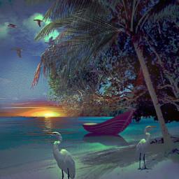 freetoedit nature sea sunset palmtrees srcpalmtreeshadow palmtreeshadow