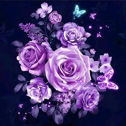 freetoedit flower flowers rose roses