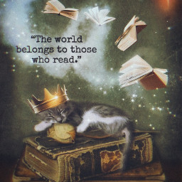 art fantasy booklover readingtime dreamy magical kitty mycat catsofpicsart furmama collection stestyle ste2020 madewithpicsart love
